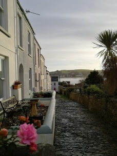 terrace houses,sea,palm tree,cobbles,hills