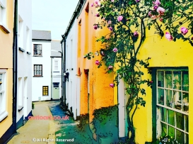 Pastel coloured cottages, cobbles, roses round the door