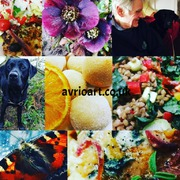 Butterfly, dog, flowers, chocolate, Salad collage